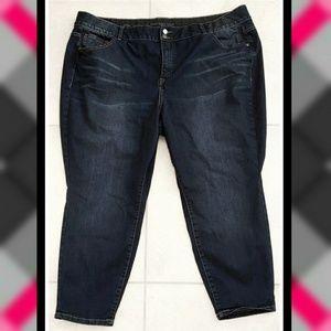 LANE BRYANT Ankle Skinny PLUS SIZE Jeggings Jeans